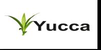 yucca-new